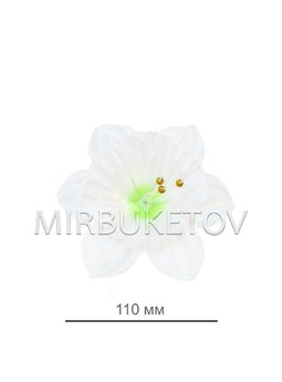 Пресс-цветок Нарцисс, 110 мм, E100