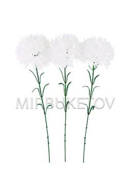Хризантема белая на ножке, высота 580 мм, M029