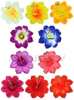 Пресс-цветок колокольчик общая A115