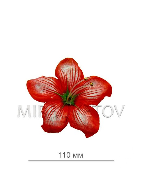 Пресс цветок красная кувшинка атлас E5
