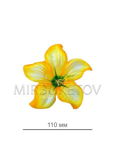 Пресс цветок лимонная кувшинка атлас E5