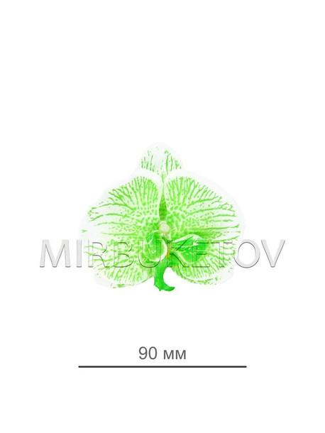 Орхидея, диаметр 90мм, белая с салатовым 0072-1