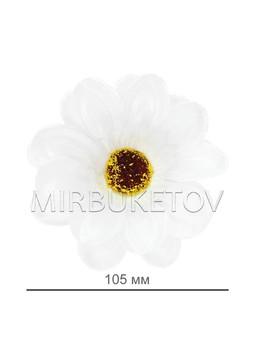 Ромашка разноцветная атласная, 105 мм