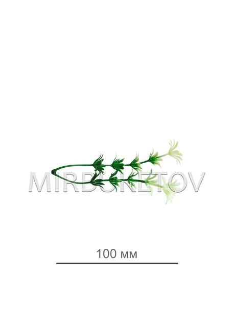 Добавка двойная (мелкоцвет) B124