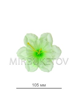 Пресс нарцисс светло-салатовый с зеленой тычинкой