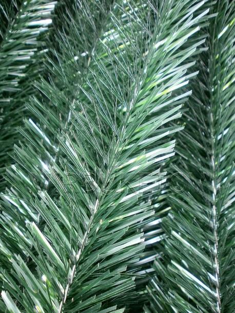 Хвоя мягкая 5 мм, зеленые иголки