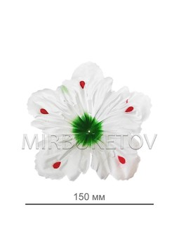 Пресс цветок белая лилия атлас E14