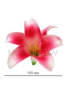 Лилия латексная малиновая, 150 мм, Latex002