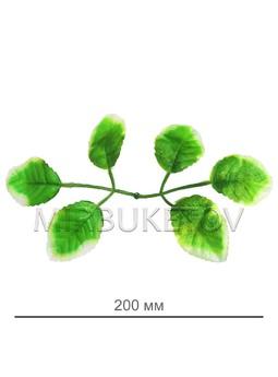 Лист салатовый под розу шестерной, 200 мм