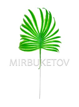 Лист пальмы пластмассовый, 400 мм, L207