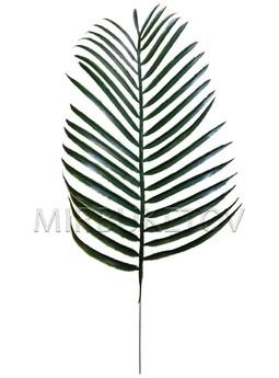 Лист пальмы пластмассовый, 490 мм, L208