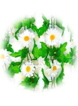 Лиана Ромашка белая с листом, 200 см, Ln003