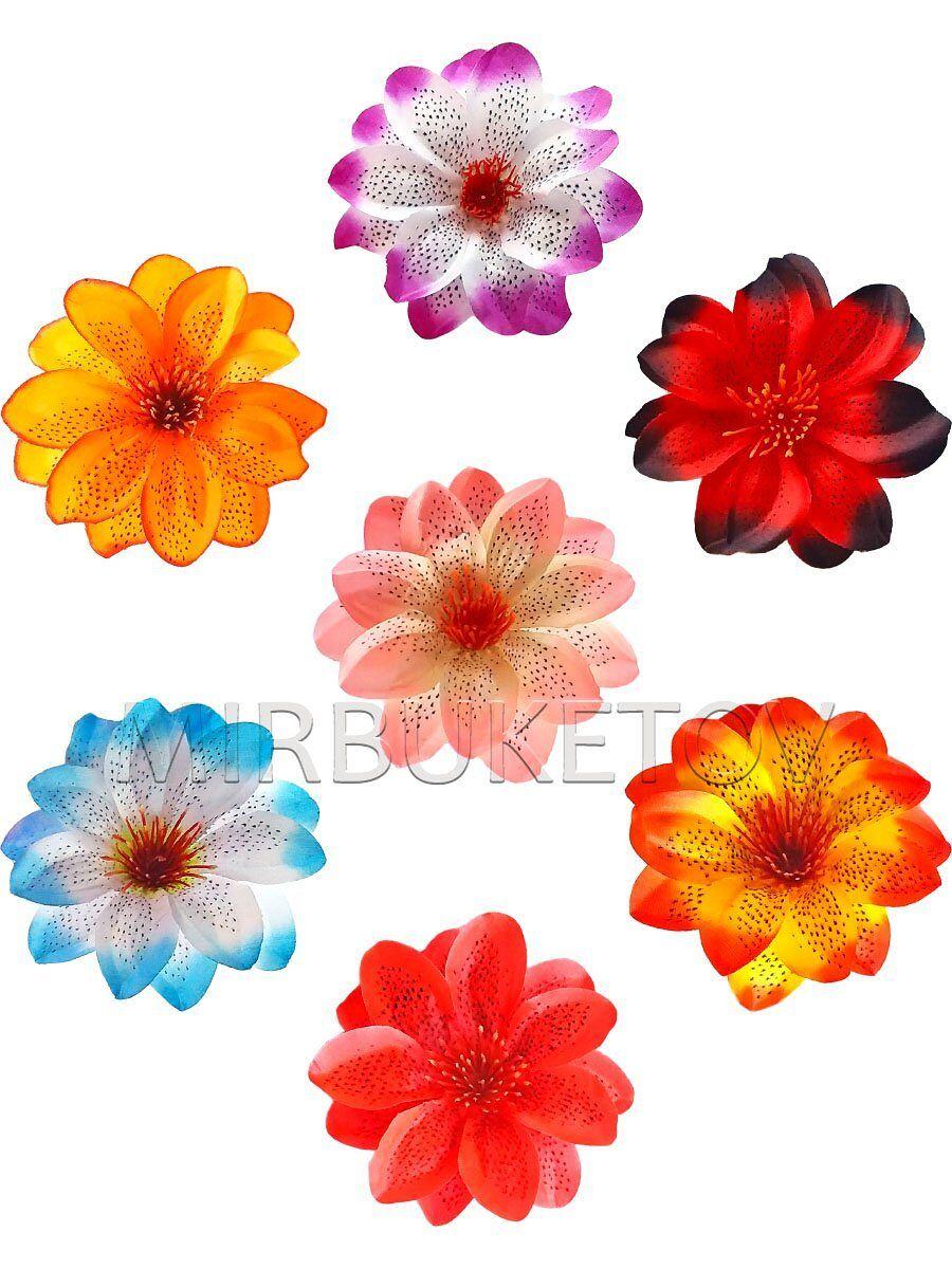 Одиночные цветы оптом одесса 7 км