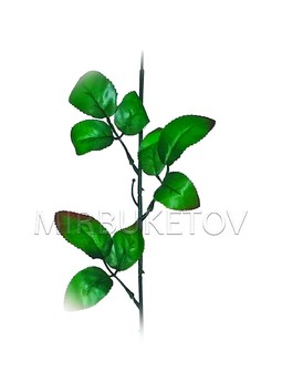 Ножка одиночная под розу, 3 тройных листа с кантом, 570 мм