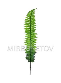 Лист папоротника одиночный темный со светлым, 550 мм, L230