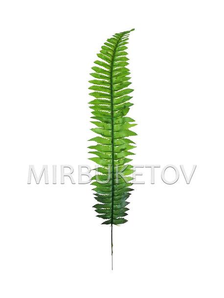 Лист папоротника одиночный темный со светлым, 550 мм