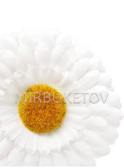 Ромашка белая шелковая, 110 мм