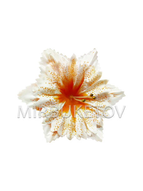 Искусственные Пресс цветы с большой вставкой Орхидея, атлас, 140 мм