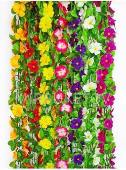 Лиана Фиалка с листом, 190 см
