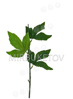 Ножка одиночная с листьями пиона, Люкс, 620 мм