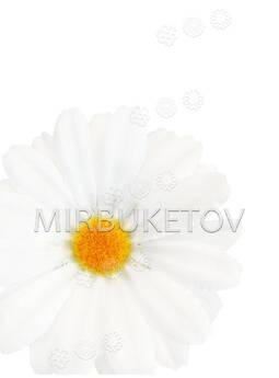 Искусственная Ромашка, белая, шелковая, 80 мм