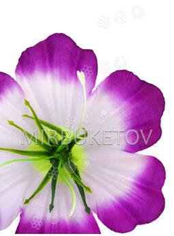 Искусственные пресс цветы Лилии, с тычинкой, шелк, микс, 120 мм