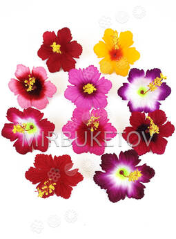 Пресс цветы с тычинкой Лилия резная, бархат, микс, 90 мм