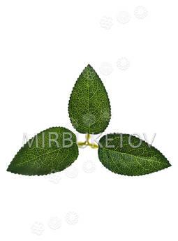 Искусственный Лист тройной, зеленый, 180x100 мм
