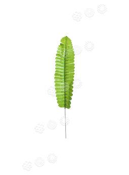 Лист папоротника одиночный, зеленый, 340 мм