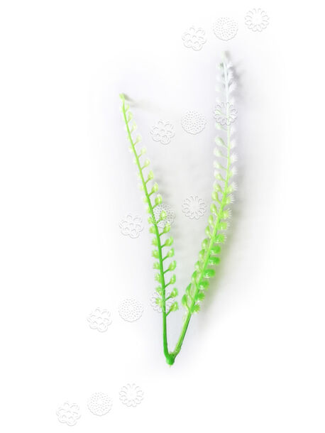Добавка пластиковая двойная, зеленая с белым, 160 мм