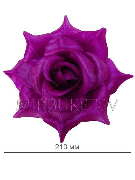 Роза атлас великан F69