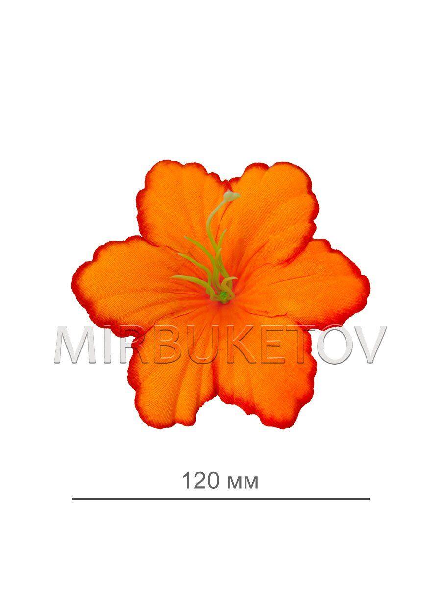 Голландских ромашек, одиночные цветы оптом одесса 7 км