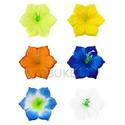 Пресс-цветок мальва угловая шелк, 120 мм, B35