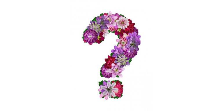 Где купить искусственные цветы?